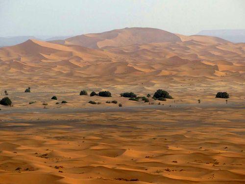 Deserto_8